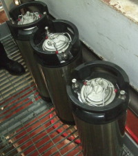 Our Ardennes yeast in its Cornelius kegs, ready for pitching.